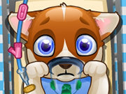 Click to Play Puppy Surgery